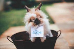 Easter Bunny Race in Laisvės Avenue